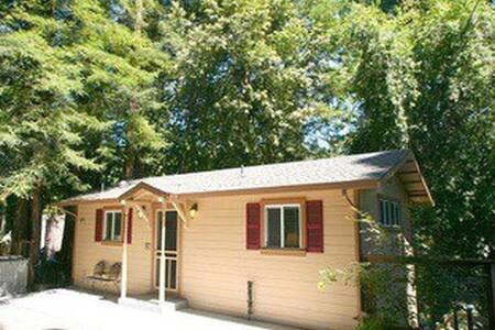 The Blee's Knees of the Redwoods! - Guerneville - House