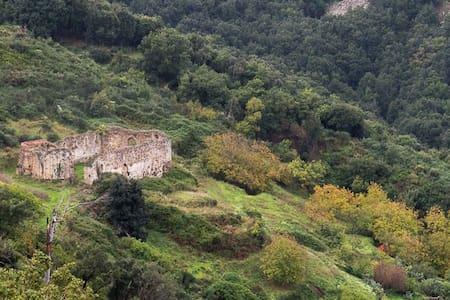 Wundergarten Forest Lodge, wildlife in Sicily - Gratteri