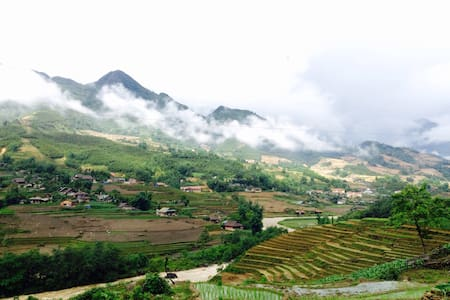 Sapa Rice Field View - Sa Pa