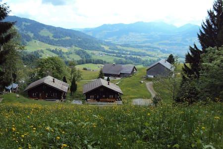 Ferienwohnung im Blockhaus Metzler - Schwarzenberg