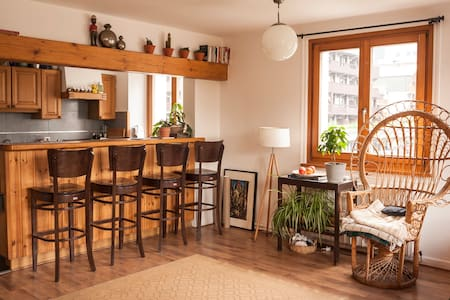 Private Room in Beautiful Central Appartement - Apartment