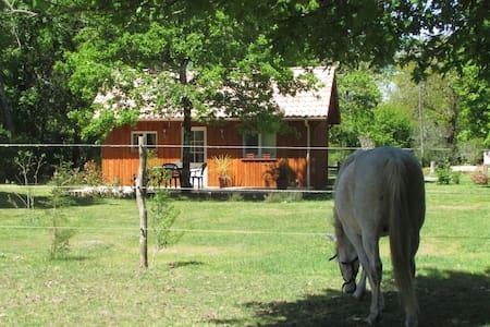 Gîte équestre - Luglon - Alpehytte