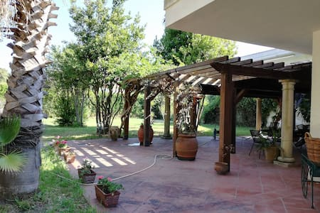 villa surrounded by verda 100 meters from great s - San Cataldo - Villa