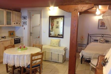 Aimili's Studiο- EXANTHIA-tallest part- - Apartment