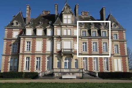 Duplex au Château - Ocquerre - Istana