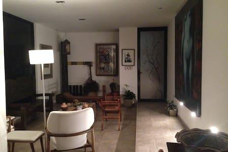 Apto para gente de negocios. Tranquilidad, comfort - San Luis Potosí - Maison