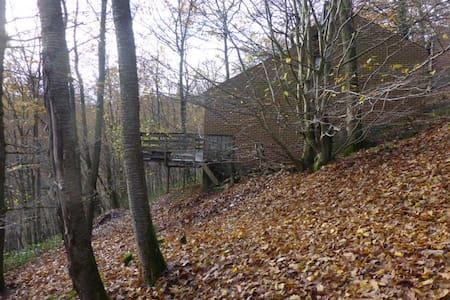 4 SEASONS HOUSE 2-6 PERS. BETWEEN THE TREE TOPS:-) - Hastière - Haus