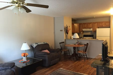 Comfortable 2BD 2BR Apartment - Wise - Apartamento