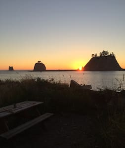 Beach Camper - La Push