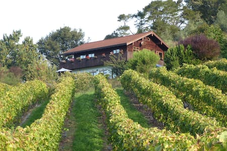 Swiss Chalet over hilly vineyard and river - Ngatimoti - Chalet