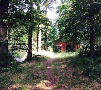 Adorable petite maison ds les bois - Tellin - Talo
