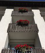 Picture of Hotelstudio in Triberg