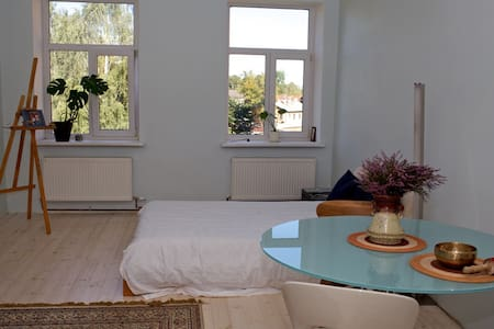 Spacious room in great location - Riga