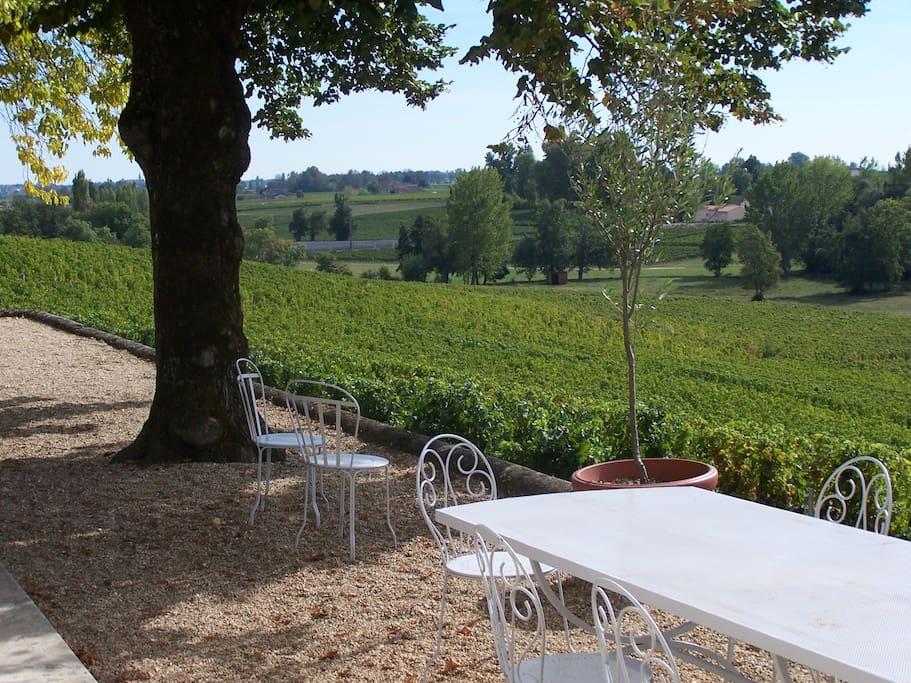 Vue sur le vignoble de Pomerol et Saint Emilion