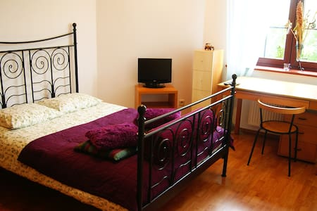 Cosy room with big double bed - Wrocław - Apartemen