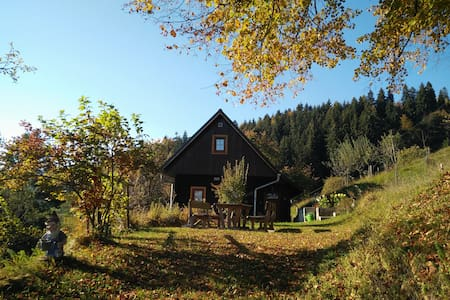 Cozy heaven in nature with perfect view - Faház