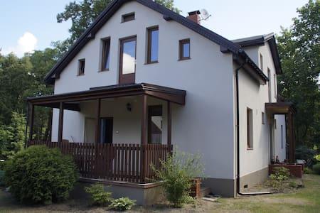 Gezinsvriendelijke studio met tuin - House