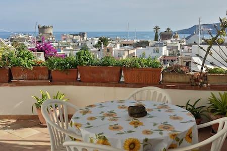 ISCHIA-FORIO Appartamentino Panoramico - Forio - Apartment