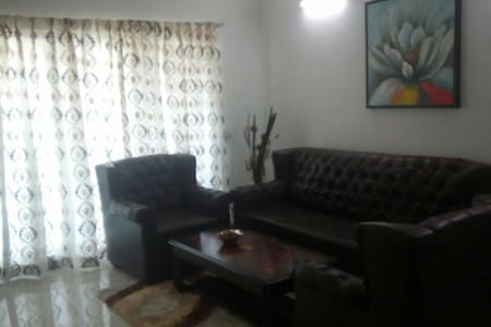 1 bhk fully furnished apartment.