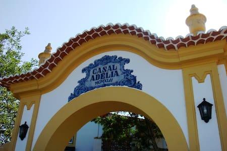 Casal Adélia, centre of Portugal - Villa