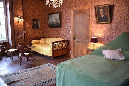 Chambres Marron et Noire avec Salons au Chateau - Mignerette - Zamek