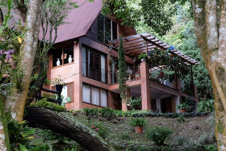Boutique Forest Birdloge  Cali Colombia - Bed & Breakfast