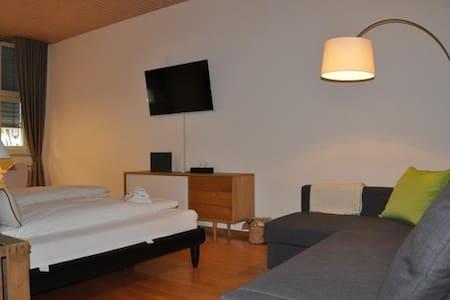 Zentral gelegene Unterkunft - Villigen - Apartment