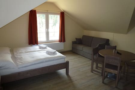 Room for 4 in the mountains - Carlsbad - Czech Rep - Merklín - Wohnung