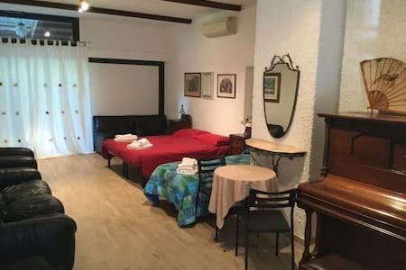 Camera in Antica Corte Milanese - Bed & Breakfast
