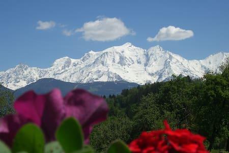 les balcons du Mt Blanc *** - Apartment