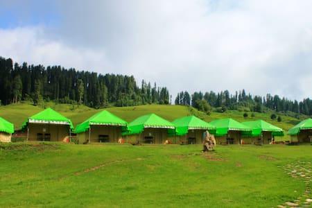 Gulmarg Meadows - Tent