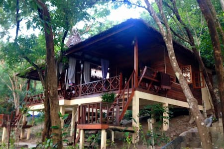Jungle Bungalows Jungle Life - Bungalow