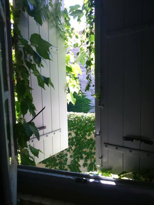 Une fenêtre sur une cours intérieure