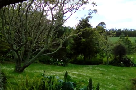 3 bedroom Private Home Sanctuary Bay of Islands - Waipapa - Huis