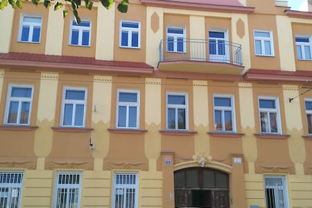 Downtown Teplice Apartment  U Novych Lazni street - Teplice