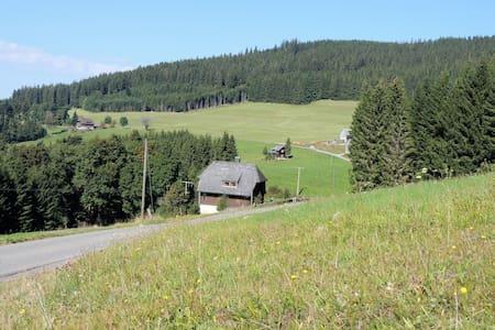 """Historisches Ferienhaus """"Seiler-Haus"""" - Titisee-Neustadt - House"""