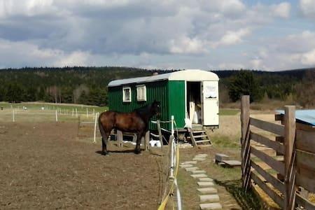 Maringotka na ranči u lesa. - Wohnwagen/Wohnmobil