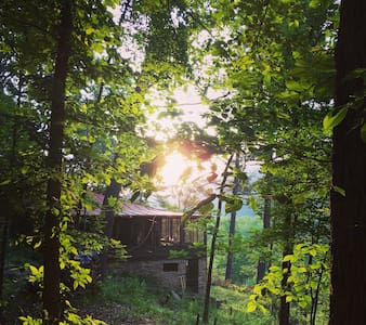 Perfect Shenandoah Forest Retreat - Fort Valley - Cabin