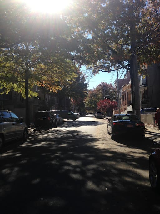 Tree-lined street, parking available on the street, safe neighborhood
