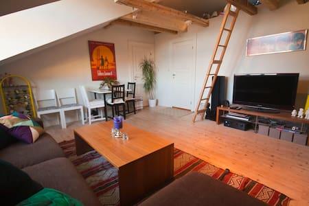 Charming loft flat/ great location - Oslo - Loft