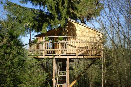 Cabane perchée en pleine forêt - Baumhaus