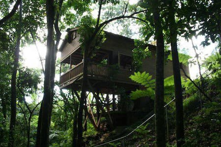 Tree House - Utuado - Casa