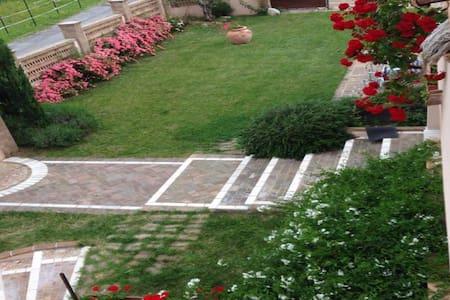 Stupenda villa in collina - Castrocielo - Bed & Breakfast
