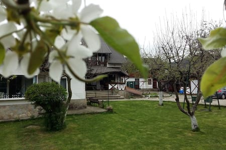 Charming Sf Nicolae 3***- agroturism pension - Vila