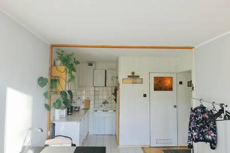Nice, cosy studio in Tricity/Mieszkanie w Gdyni - Gdynia - Apartament