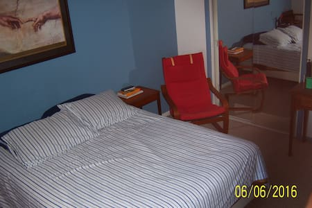 Fast in D.C., master bedroom in Arlington - Arlington - Apartment