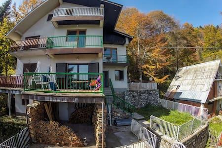Ski Hut Gorica -Dorm - Guesthouse