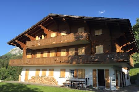 Ferienwohnung mit Einstellhallenplatz, Axalp BE - Apartemen