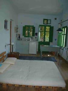 Green House for 2 - Kardiani - Talo