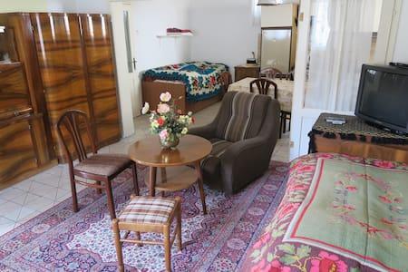 Ethno Apartment, sehr ruhig, Klima - Aradac